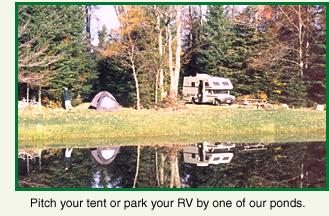 Pitch your tent or park your RV by one of our ponds.